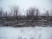 плетень зимой