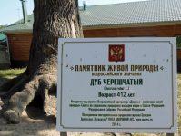 памятник живой природы - 412 лет дубу
