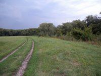 дорога к поляне
